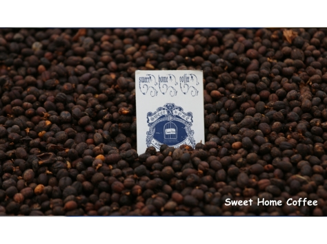 NEW 精品豆.004